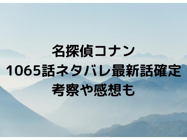 名探偵コナン1065話ネタバレ【海猿島に火を放つ黒ずくめの組織!水無にキャメルが撃たれる!】